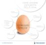 uova contaminate etichetta 2
