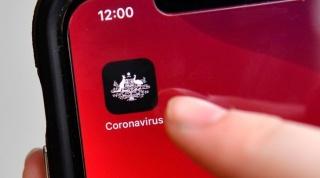 Coronavirus, Immuni, app, salute, privacy, federconsumatori ER
