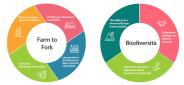federconsumatori, Farm to Fork, il green deal europeo, economia sostenibile